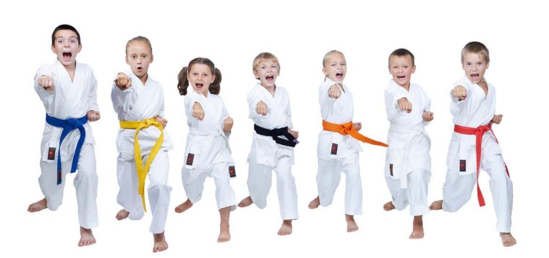 Karate lernen Villach