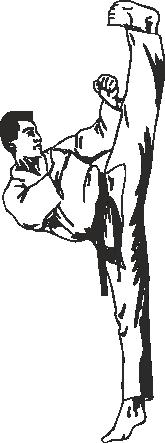 Karateschule Wirnsberger Villach Karate lernen